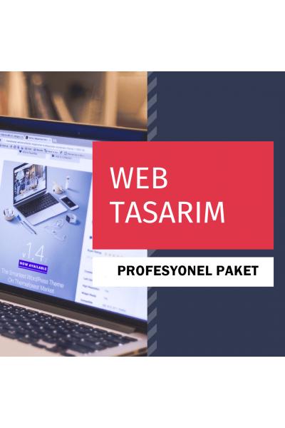 Web Tasarım ( PROFESYONEL PAKET )